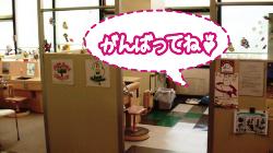 日本歯科1