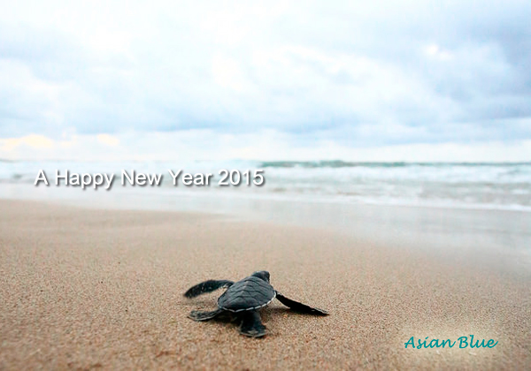 2015年のごあいさつ