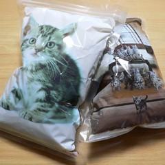 つめかえ用猫エサ袋