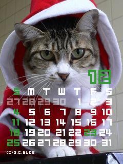 マイちゃんカレンダー200512