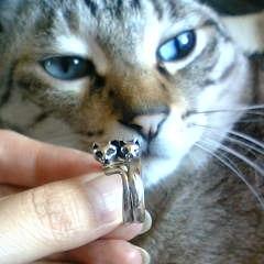 指輪って美味しいの?