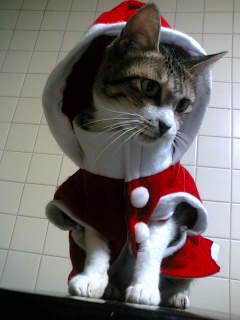 サンタって美味しいの?