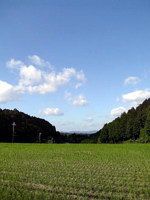 のどかな山奥の田園風景