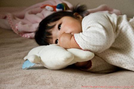 くまきち枕