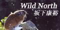 natsuhiko_blog banner