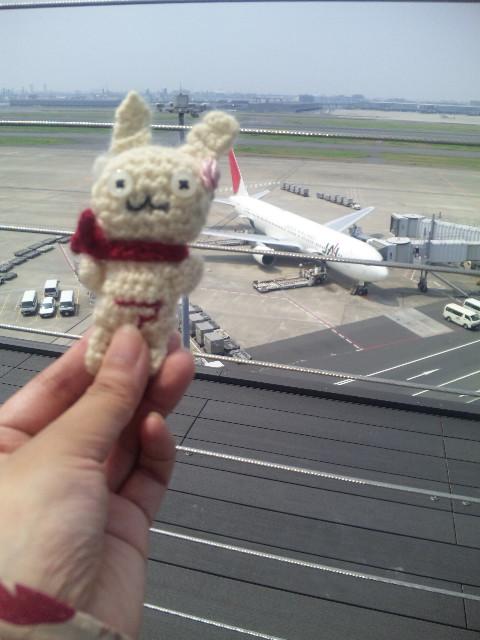ウサコと飛行機