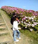 2006_5_3_花