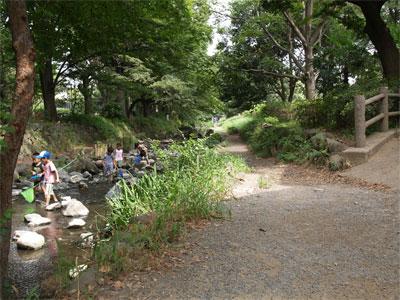 右が三角公園、左は神田川