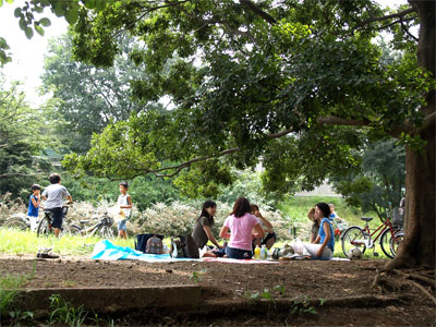 三角公園では、ピクニック気分で