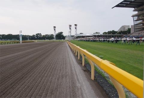 競馬のコース(芝とダート)