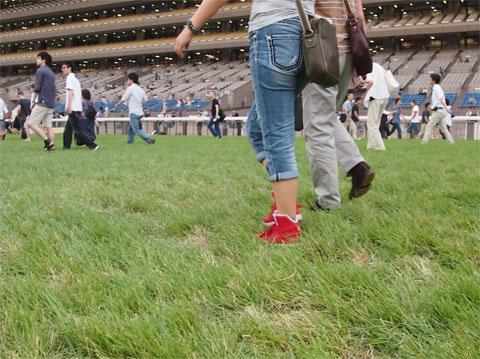 競馬の芝コースを歩いた。
