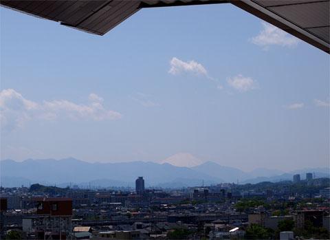 東京競馬場から富士山が見えます