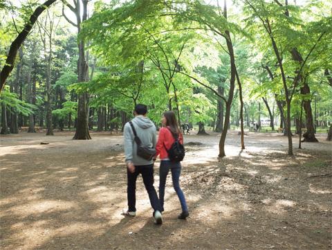井之頭公園 新緑