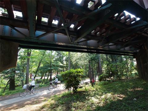 井之頭公園 鉄橋下