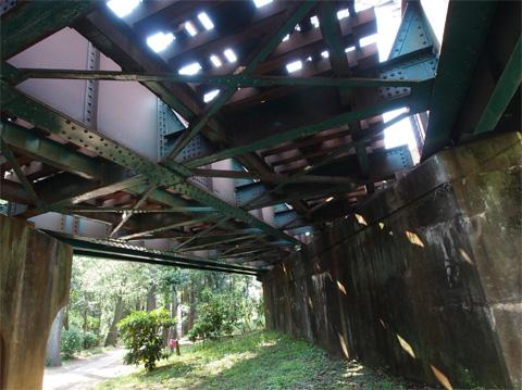 井之頭公園 鉄橋の真下