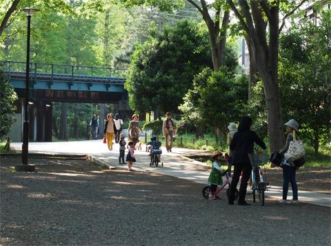 井之頭公園神田川沿い