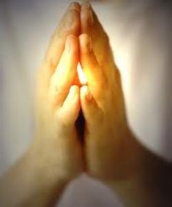 βグルカンで回復を祈る