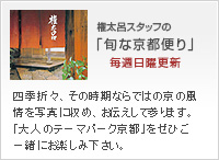 権太呂スタッフの「旬な京便り」