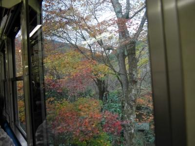紅葉トンネル.JPG