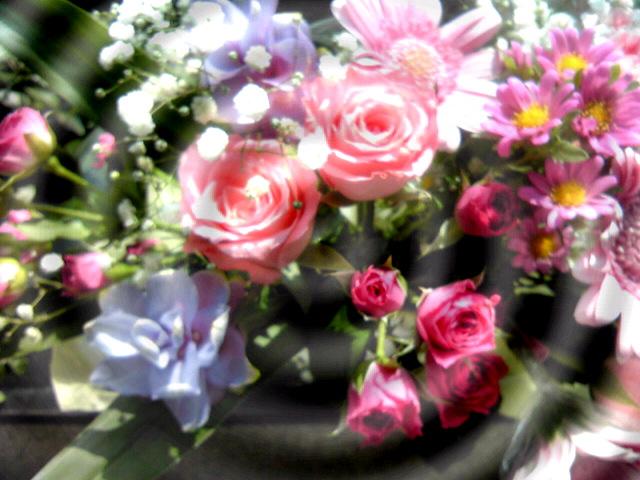 満月の花.jpg