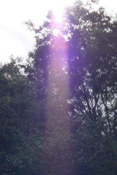 女神の光り11.jpg