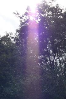 女神の光り1.jpg