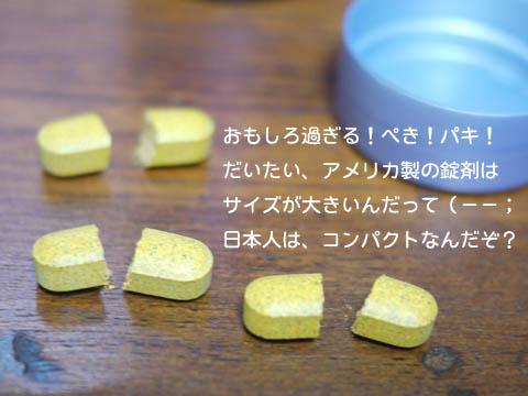 j6.jpg