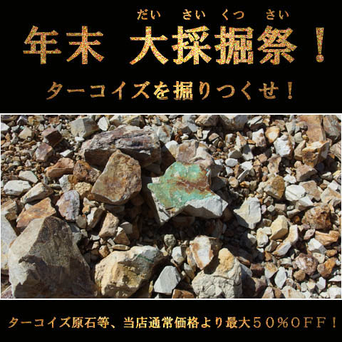 daisaikutsu_top_01.jpg