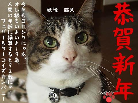 妖怪猫又20170101.jpg