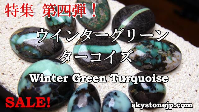 wintergreen-top-02.jpg