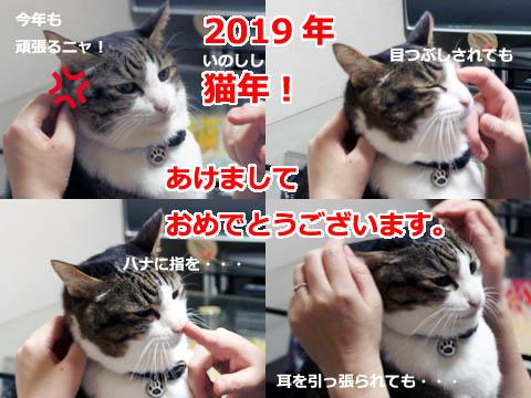 2019-0101.jpg