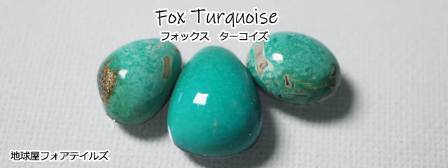 fox-top-001.jpg