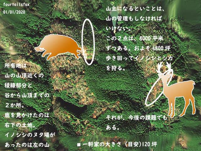20200101-013.jpg