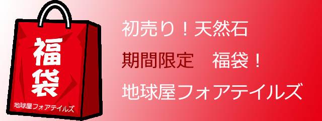 fukubukuro2020.jpg