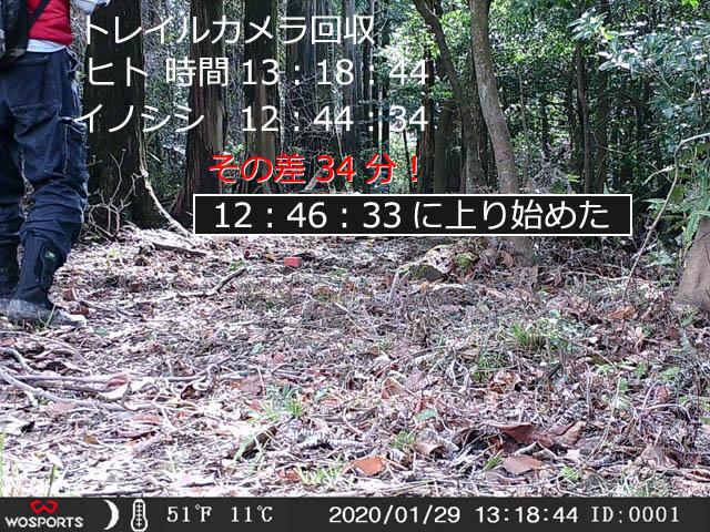 0129-pct-008.jpg