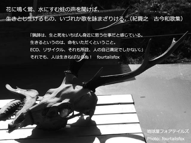 0210-007.jpg