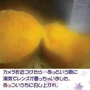 本場・種子島から「安納いも」の美味しさを!!