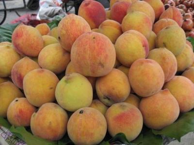 インドの桃