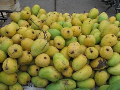 インドのマンゴー