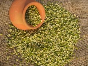 半分に割った緑豆