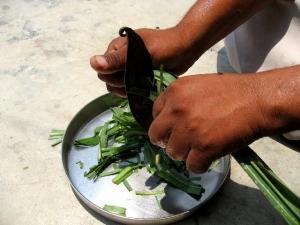 インドの包丁