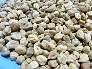 ブラックチャナ豆