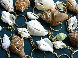 貝のキーホルダー