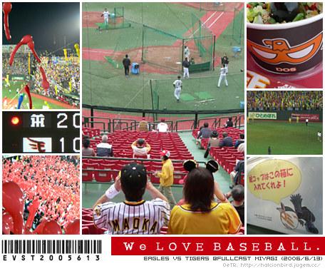 We Love Baseball.