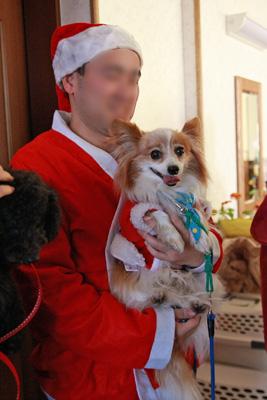 サンタさんとサブちゃん