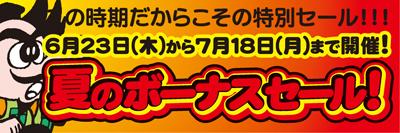 7月ボーナスDM表-blog.jpg