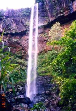 西表最大の滝ピナイサーラ