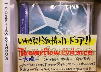 To Overflow Evidence / 太陽