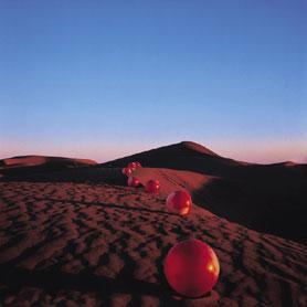 夕暮れの砂丘に、でっかい玉が ぽつんぽつんと道をつくる。