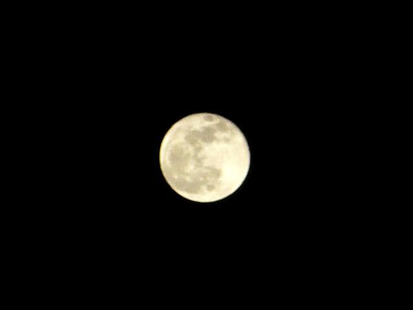 2010年元日の満月